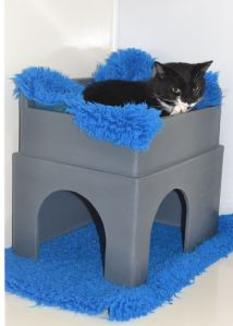 Picture of a cat using the hiding part of the feline fort
